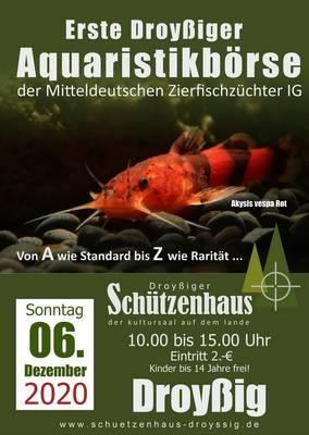 A4_aquaristikboerse_2-2020.jpg