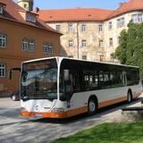 rad-wanderbus_droyiger-zeitzer_forst.jpg