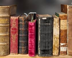 Bibliothek Droyßig